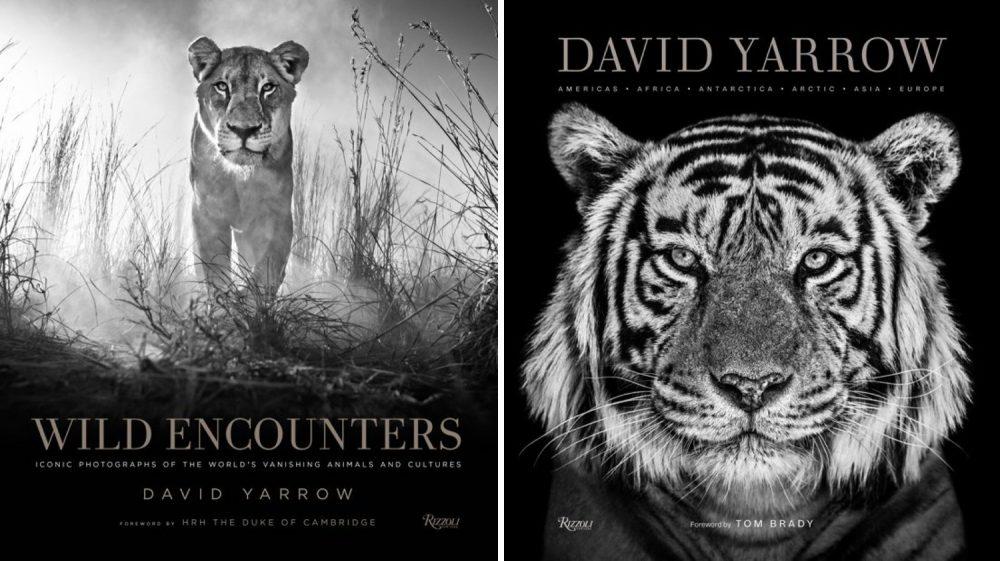 fotografie-boeken-tips-inspirerende-fotoboeken-grote-fotografen-david-yarrow