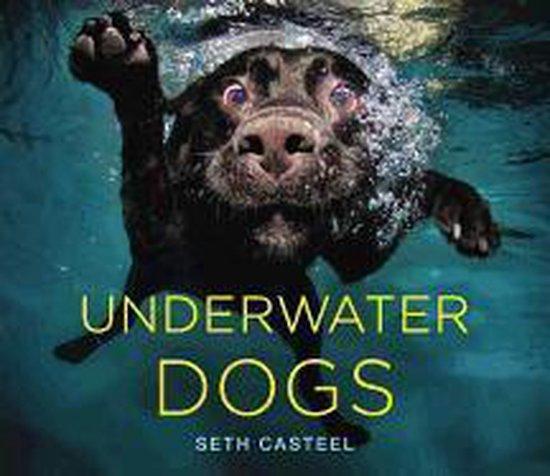 fotografieboeken-honden-underwater-dogs-seth-casteel-fotoboek